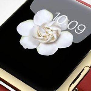 Про деякі характеристики apple watch