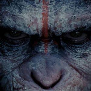 Скоро в кіно: «планета мавп: революція»